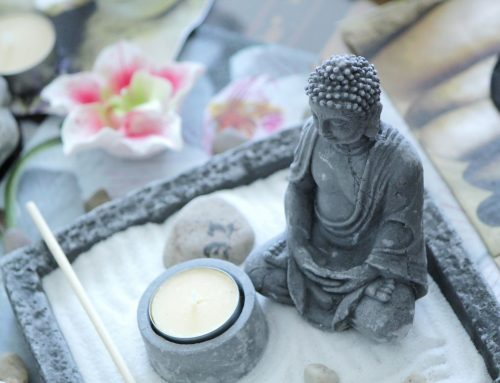 Gardening at 50 and Beyond – Finding your Zen