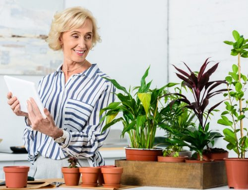 Looking for Something to Do? Try Gardening – it's Good for You